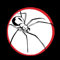 Spider-token